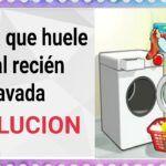 La ropa huele mal al sacarla de la lavadora